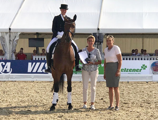 Ra Gold Fur Nicole Kirschnick Pferdesportverband Hannover E V